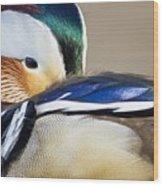 Mandarin Closeup Wood Print