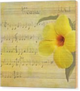 Mandevilla And Maria Wood Print