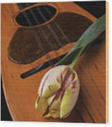Mandolin And Tulip Wood Print
