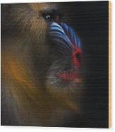 Mandrill Monkey Male Closeup Portrait Wood Print