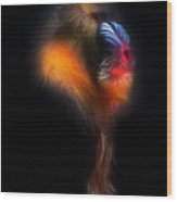 Mandrill Monkey Male Portrait II Wood Print