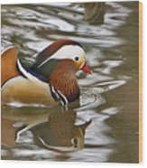 Mandrin Duck With A Purpose Wood Print