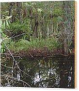 Mangrove     Wild Wood Print