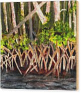 Mangrove At Gumbo Limbo Wood Print