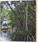 Mangrove Kayaker Wood Print by Steven Scott