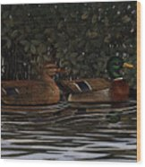 Mangrove Mallards Wood Print