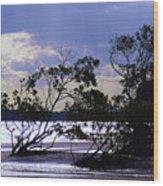 Mangrove Silhouettes Wood Print