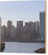 Manhattan Skyline - The View From Gantry Plaza State Park Wood Print