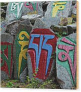 Mani Stones Wood Print