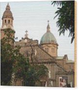 Manila Cathedral Wood Print