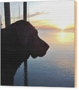 Mans Best Friend Sunset 3 411 Wood Print