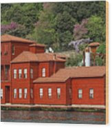 Mansions Wood Print