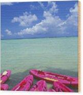 Many Pink Kayaks Wood Print