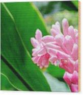 Many Pink Petals Wood Print