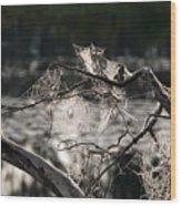 Many Webs Wood Print