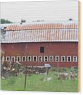 Many Windowed Barn  Washington State Wood Print