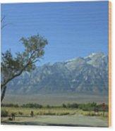 Manzanar 1 Wood Print