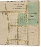 Map Of Auckland 1863b Wood Print
