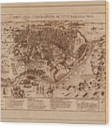 Map Of Cairo 1600 Wood Print