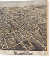 Map Of Danbury 1875 Wood Print