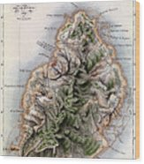 Map Of Mauritius Wood Print