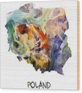 Map Of Poland Original Art Wood Print