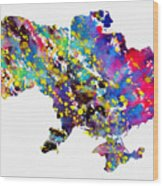 Map Of Ukraine-colorful Wood Print