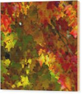 Maple Abstract Wood Print