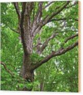 Maple Hand Wood Print
