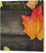 Maple Leaf Wood Print