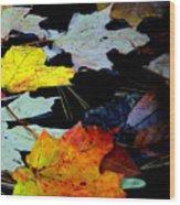 Maple Leaves-0011 Wood Print