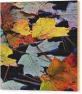 Maple Leaves-0012 Wood Print