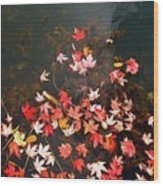 Maple Leaves On The Water  Wood Print