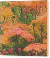Maple Magic Wood Print