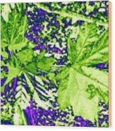 Maple Mania 19 Wood Print