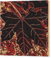 Maple Mania 9 Wood Print