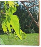 Maple Rose Wood Print