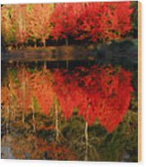 Maple Tree Mirror Wood Print