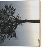 Mara Sunset Wood Print