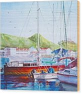 Maragot Harbor Wood Print