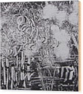 Marais 2 Wood Print