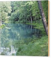 Maramec Springs 1 Wood Print