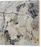 Marble Tan Black Wood Print