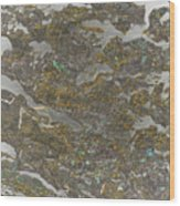 Marble Bark Colored Abstract Wood Print