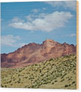 Marble Canyon V Wood Print
