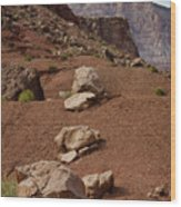 Marble Canyon Vii Wood Print