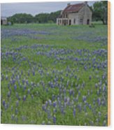 Marble Falls Texas Stone House And Bluebonnets Wood Print