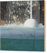 Marble Fountain Shower Wood Print