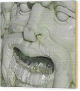 Marble Head Wood Print