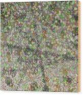 Marble Slab 6-23-2015 - 1 Wood Print